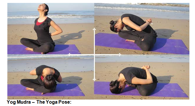 Yog Mudra The Yoga Pose